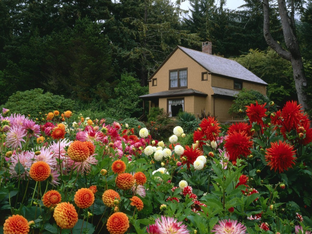 Garden House Oregon Wallpaper - Garden House Oregon Wallpaper