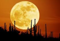 Glory Rising Moon - Glory Rising Moon Wallpaper