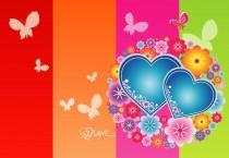 Cheerful Love Butterfly - Cheerful Love Butterfly