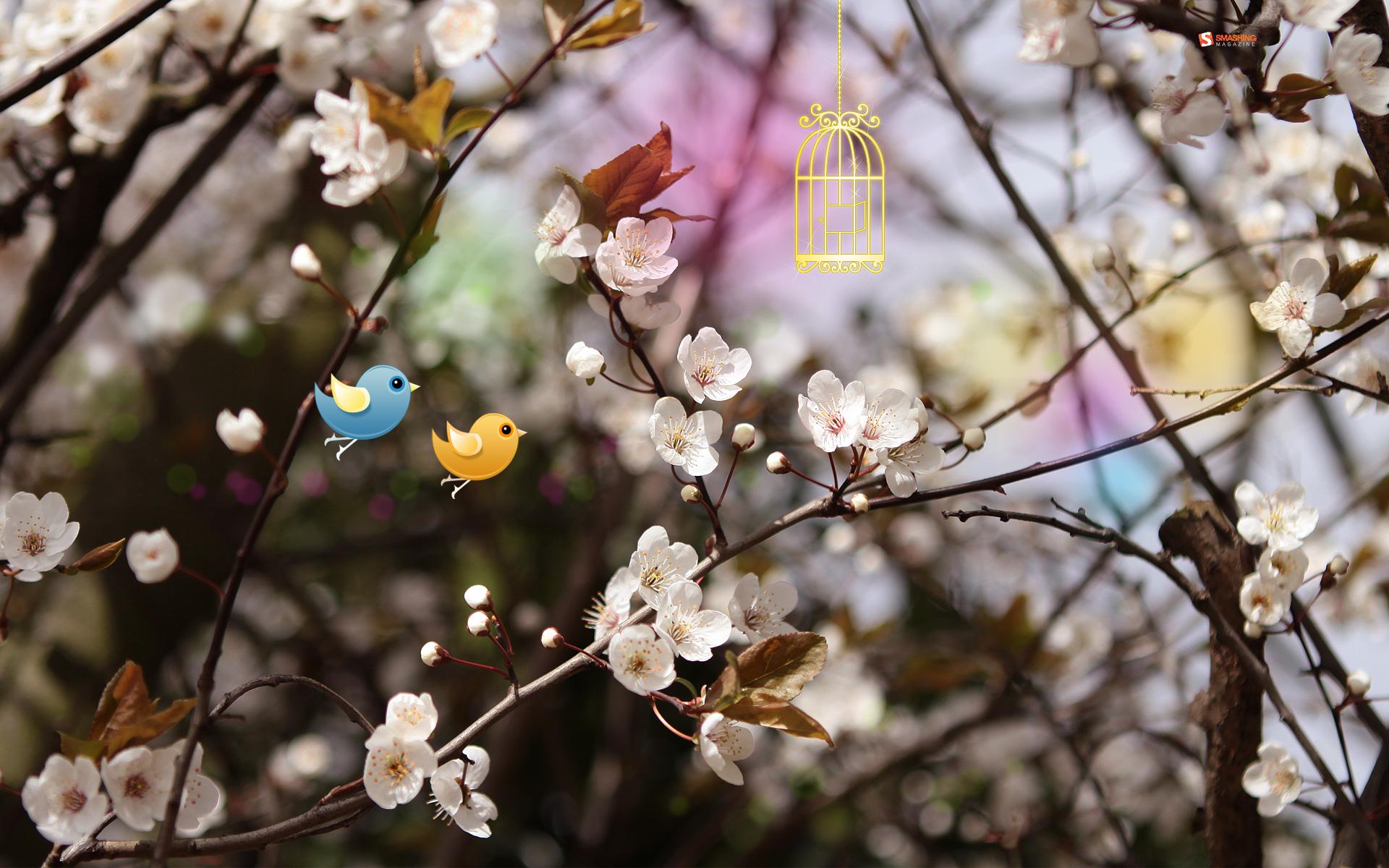 Comings Spring - Comings Spring