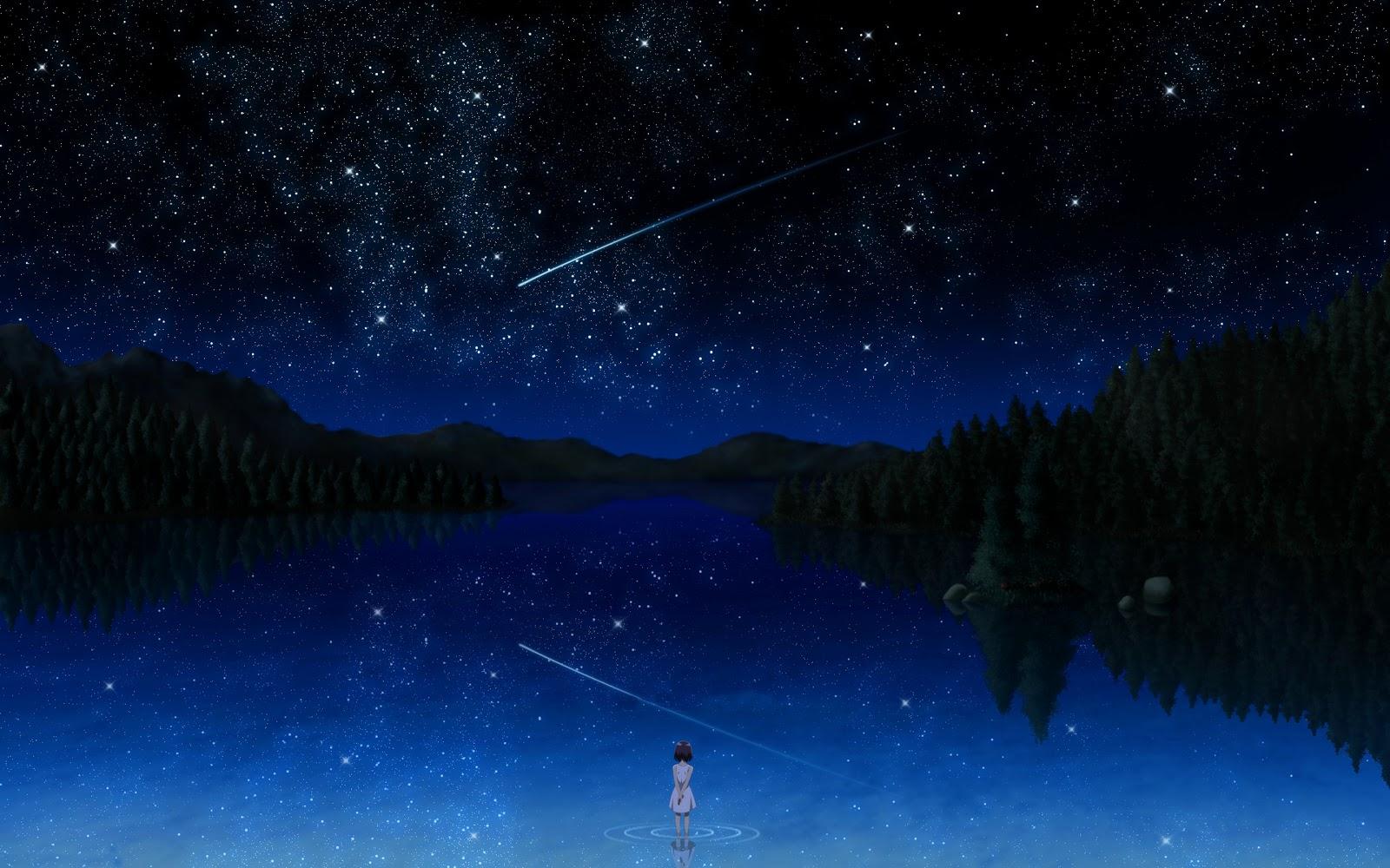 Meteor Shower Reflection - Meteor Shower Reflection