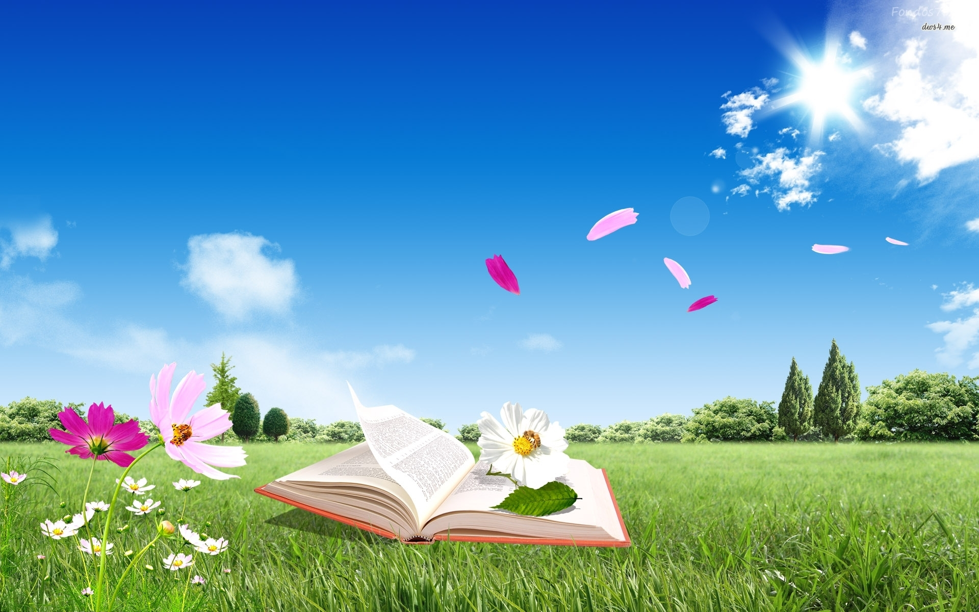 Open Book This Summer - Open Book This Summer