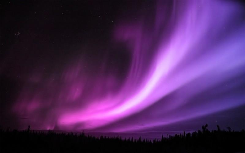 Purple Aurora Borealis - Purple Aurora Borealis