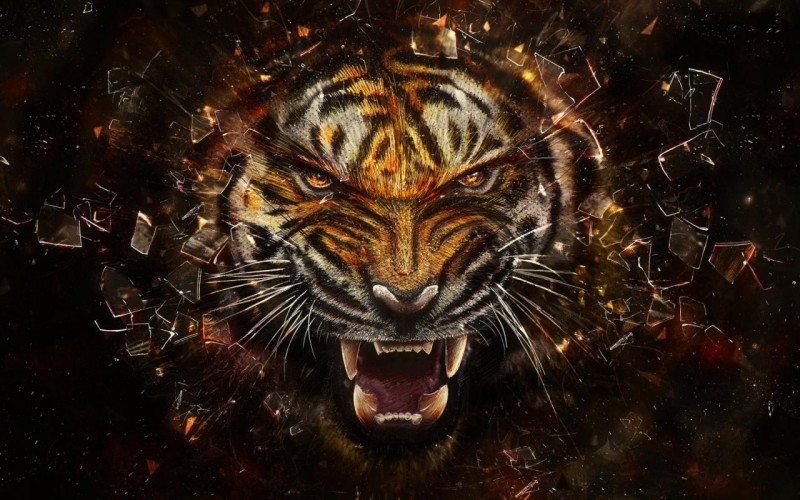Ruins Tiger - Ruins Tiger