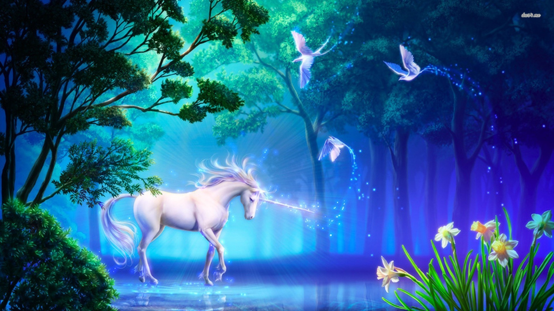 Must see   Wallpaper Horse Forest - Unicorn-Fantasy-In-The-Forest  HD_52151.jpg