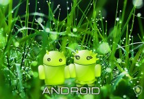 Android-Nature-Concept