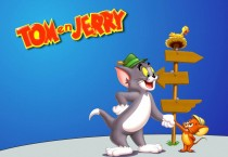Tom And Jerry Cartoon - Tom And Jerry Cartoon