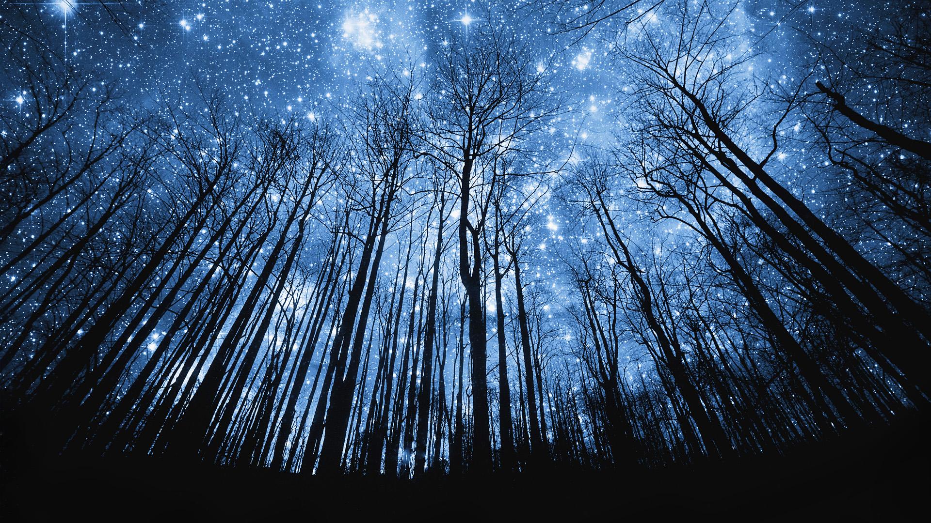 Beautiful Star Raining - Beautiful Star Raining
