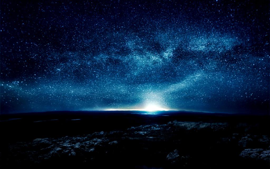 Exotic Night Star - Exotic Night Star