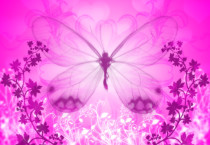 Pink Butterfly Background - Pink Butterfly Background