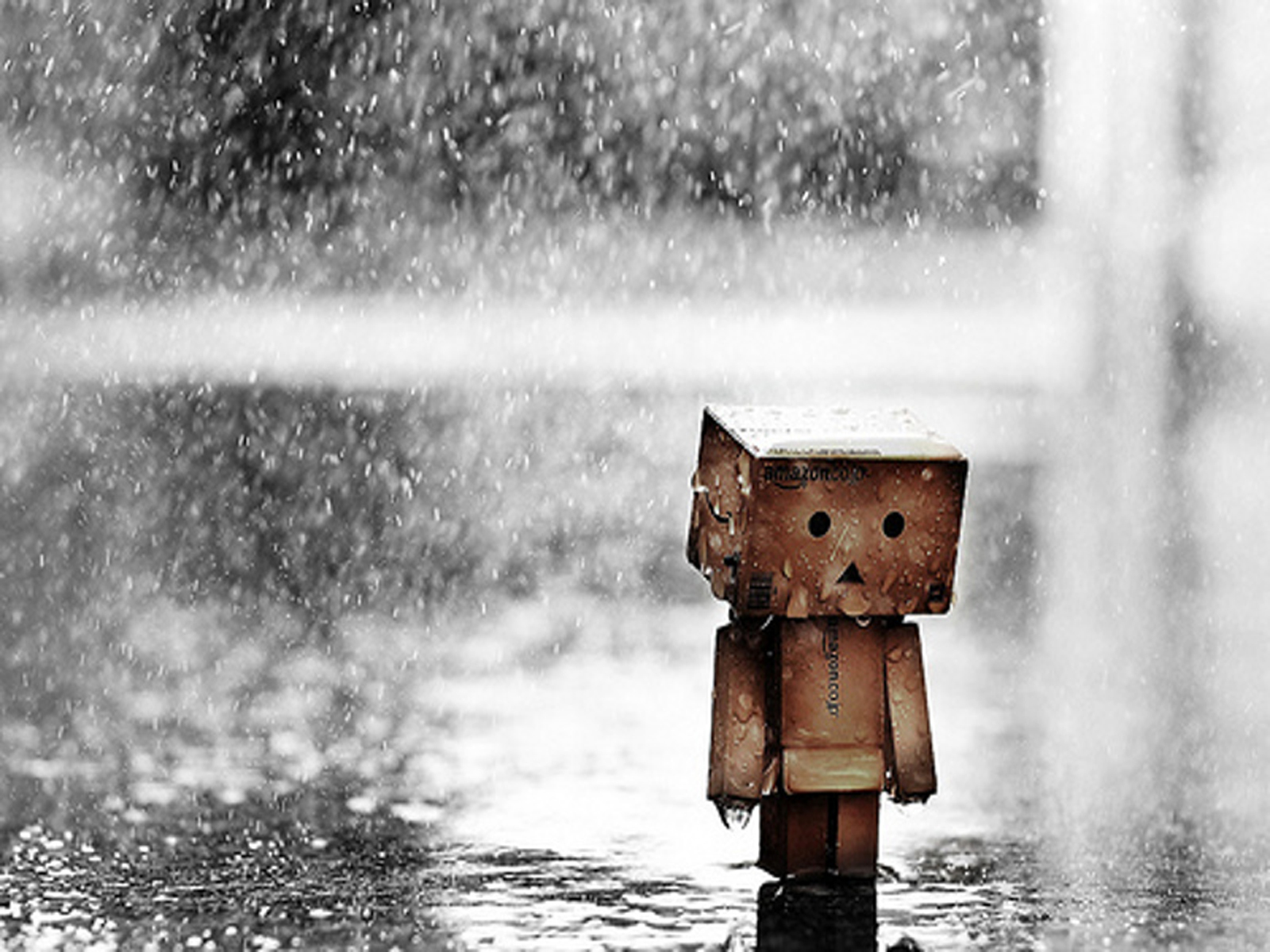 Sadness In The Rain - Sadness In The Rain