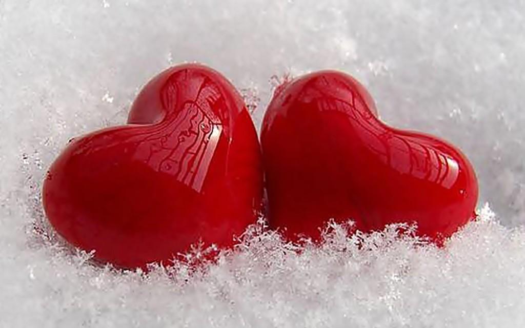 Two Seed Heart Love Wallpaper - Two Seed Heart Love Wallpaper