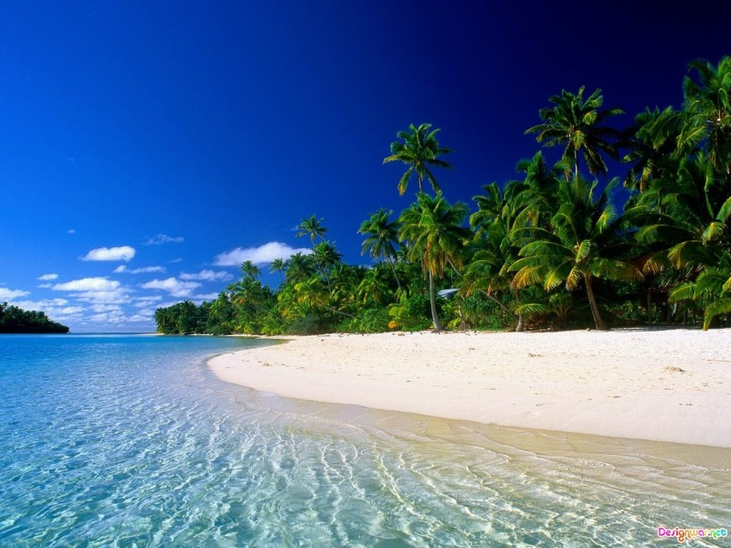 Beautiful Tropical Beach Desktop - Beautiful Tropical Beach Desktop