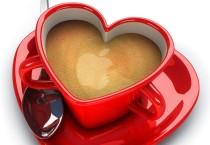 Coffee Lovers - Coffee Lovers
