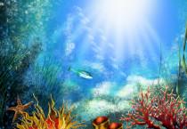 Deep Underwater Lifes - Deep Underwater Lifes