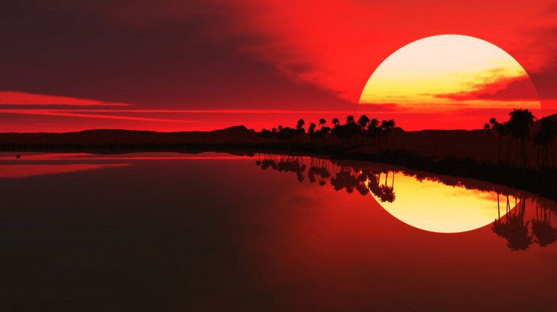 Exotic Red Sunrise - Exotic Red Sunrise