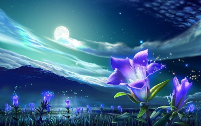 Fantasy Moonlight Picture - Fantasy Moonlight Picture