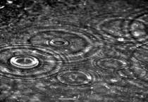 Natural Falling Rain Drops - Natural Falling Rain Drops