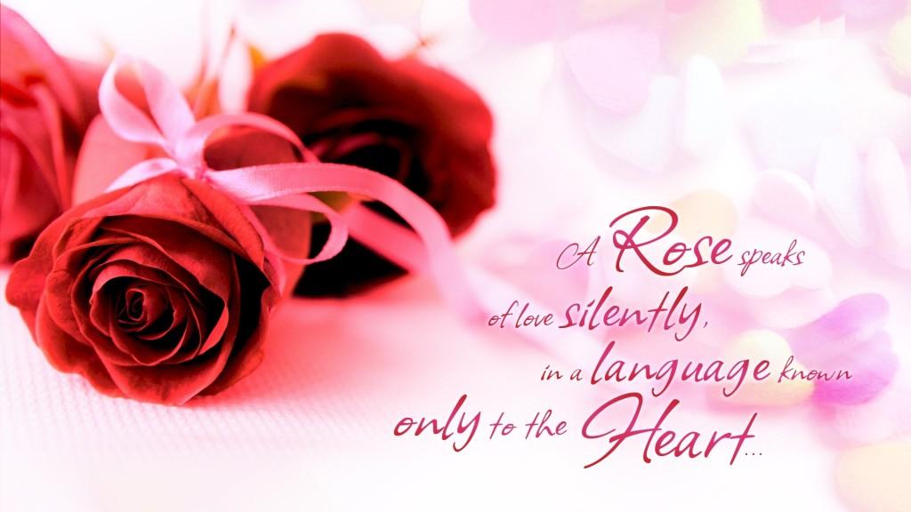 Red Rose Speaks Your Love - Red Rose Speaks Your Love