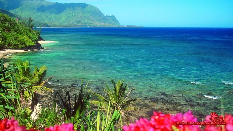 Tropical Beaches Season - Tropical Beaches Season