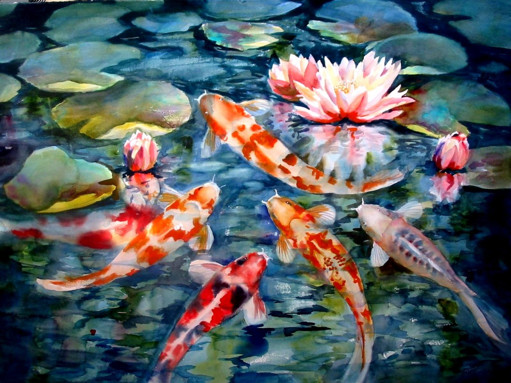Beautiful Koi Fish - Beautiful Koi Fish