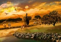 Beautify Africa Animals - Beautify Africa Animals