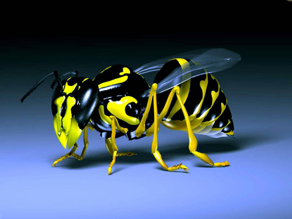Yellow Honey Bee 3D - Yellow Honey Bee 3D