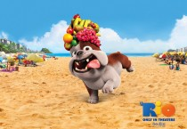 Bulldog Luiz Rio 3D Movie - Bulldog Luiz Rio 3D Movie