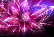 Digital Art Flowers - Digital Art Flowers