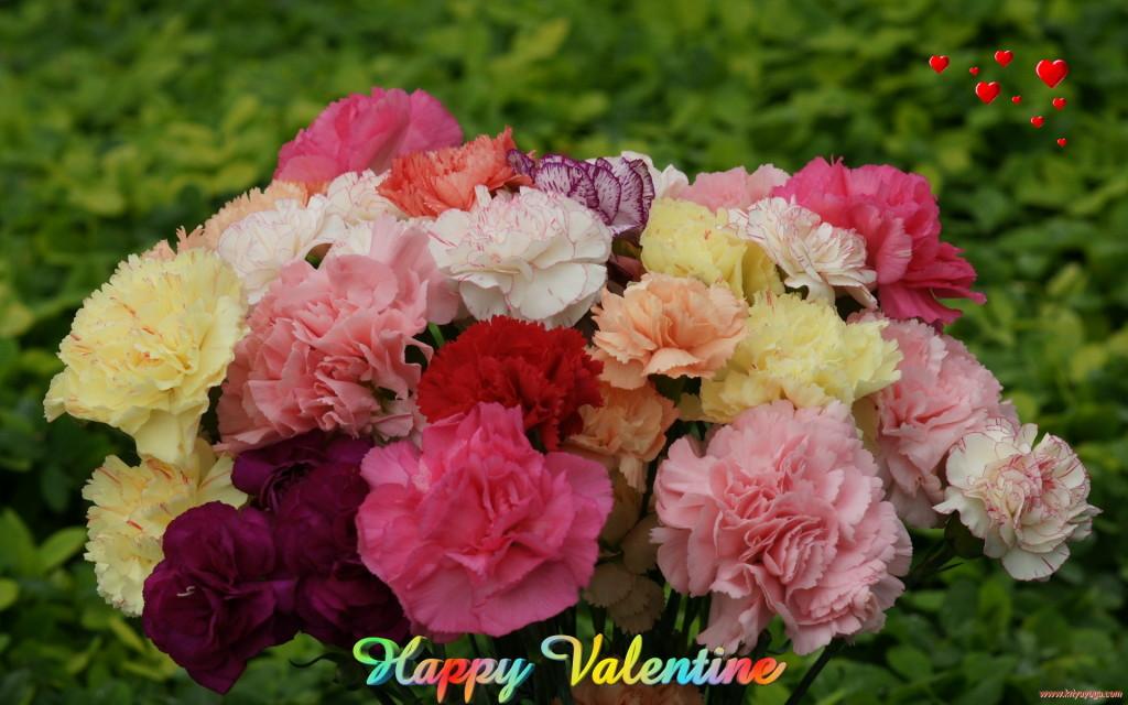 Sweet Happy Valentine Blooms - Sweet Happy Valentine Blooms