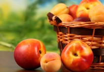 Basket of Peaches and Nectarines