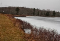 Frozen Lake Near Bridgewater