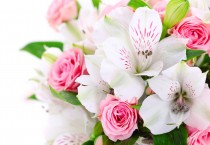 Pink Roses with Pink and White Brazillian Lilies