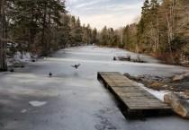 Ducks Landing on the Ice, Long View of Lake