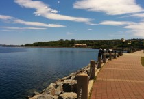 Park Overlooking the Bedford Basin
