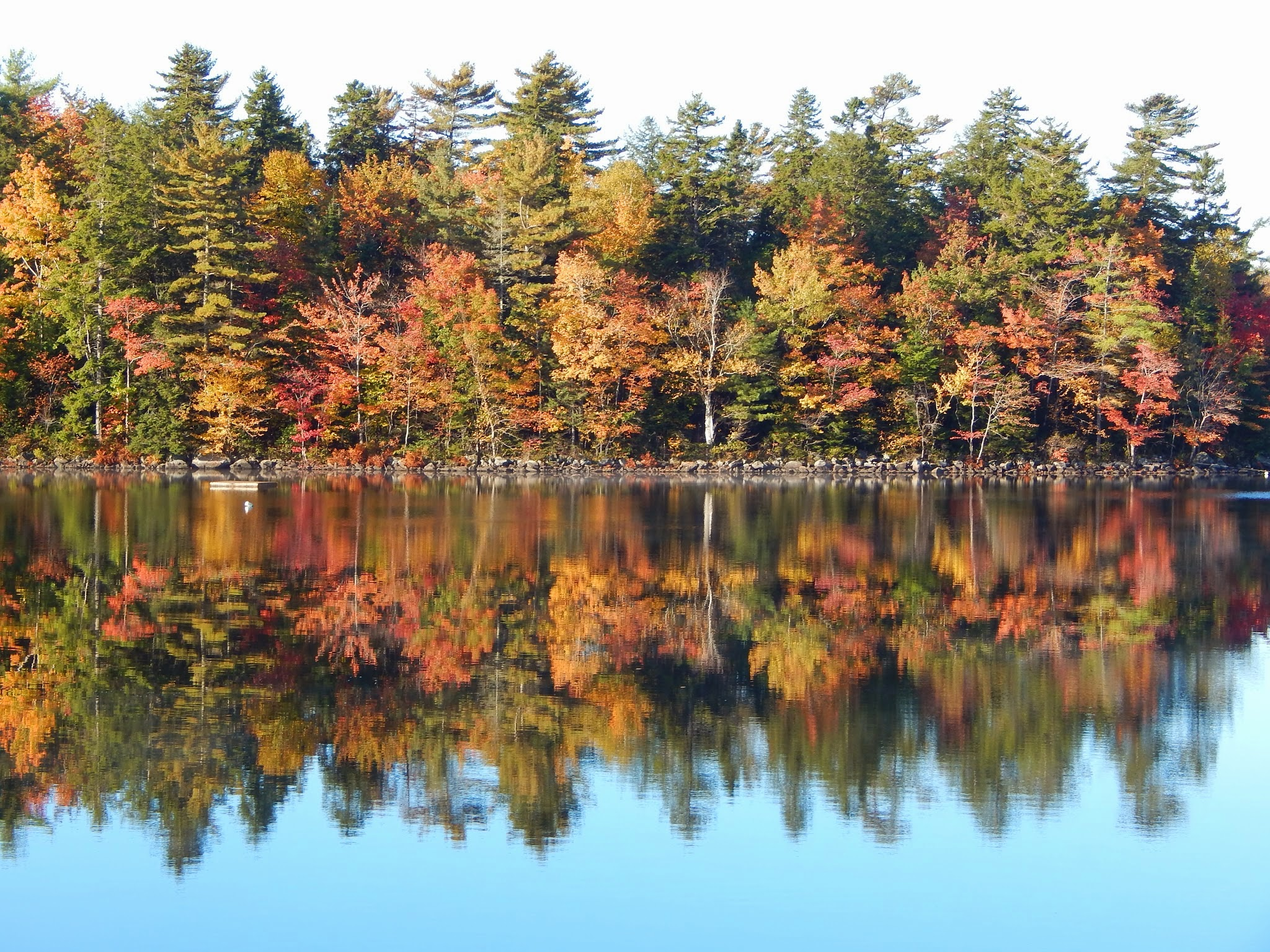 Beautiful Fall Colors Reflected In Still Lake Nature