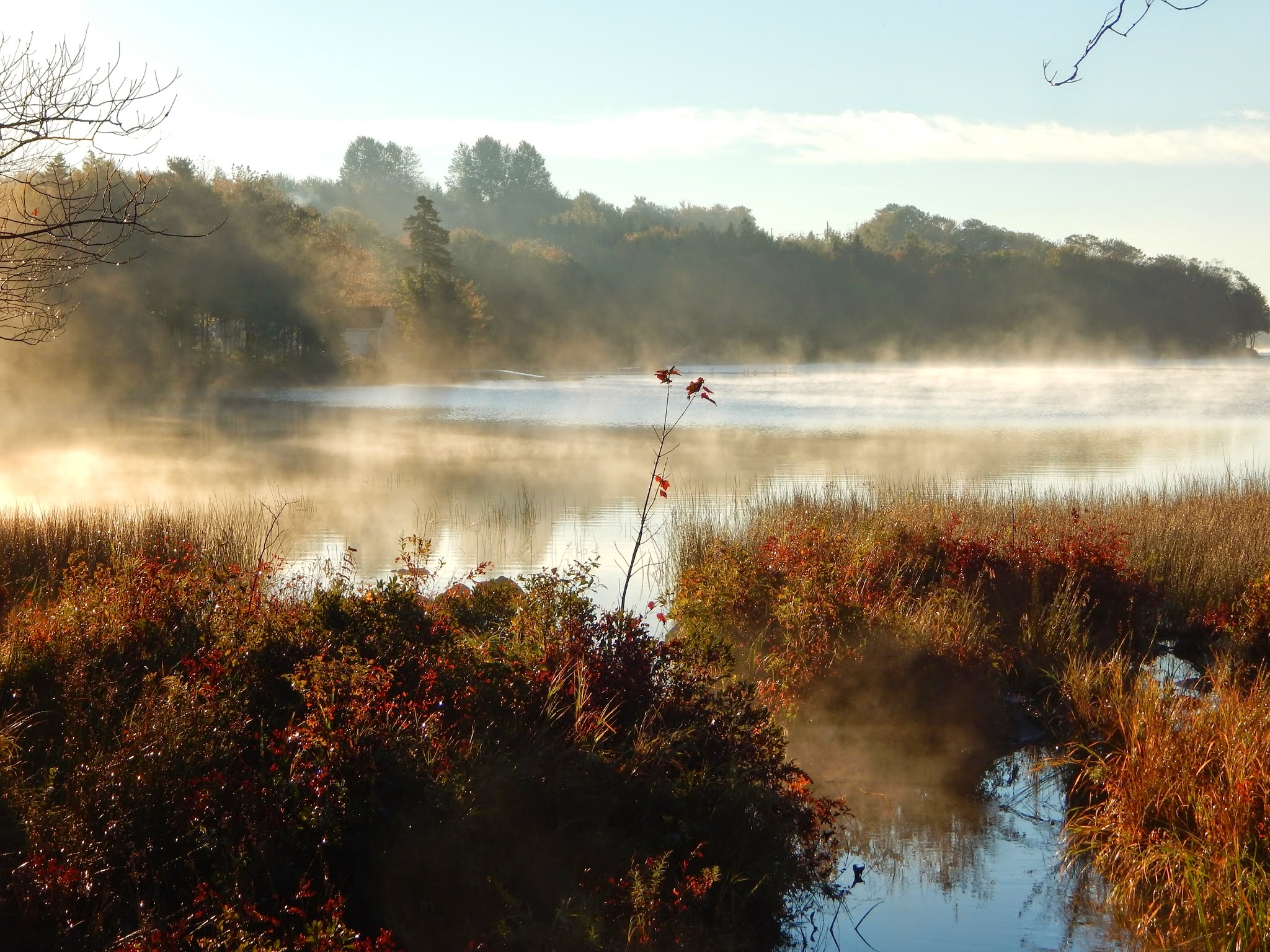 Early Morning Mist Rising Off Lake Nature