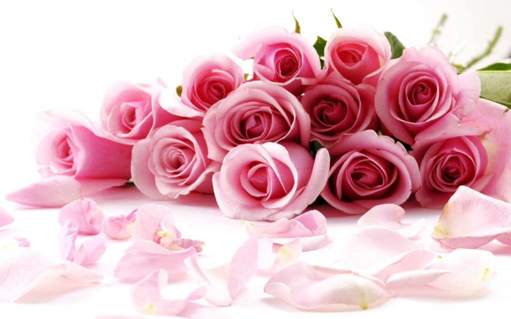 Awesome Roses - Awesome Roses