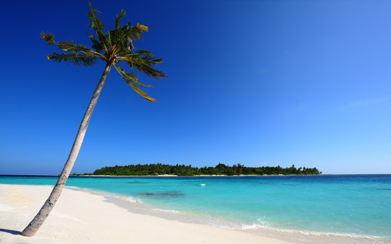 Maldivian Beach Wallpaper - Maldivian Beach Wallpaper