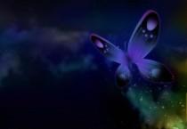 3D Digital Butterfly - 3D Digital Butterfly