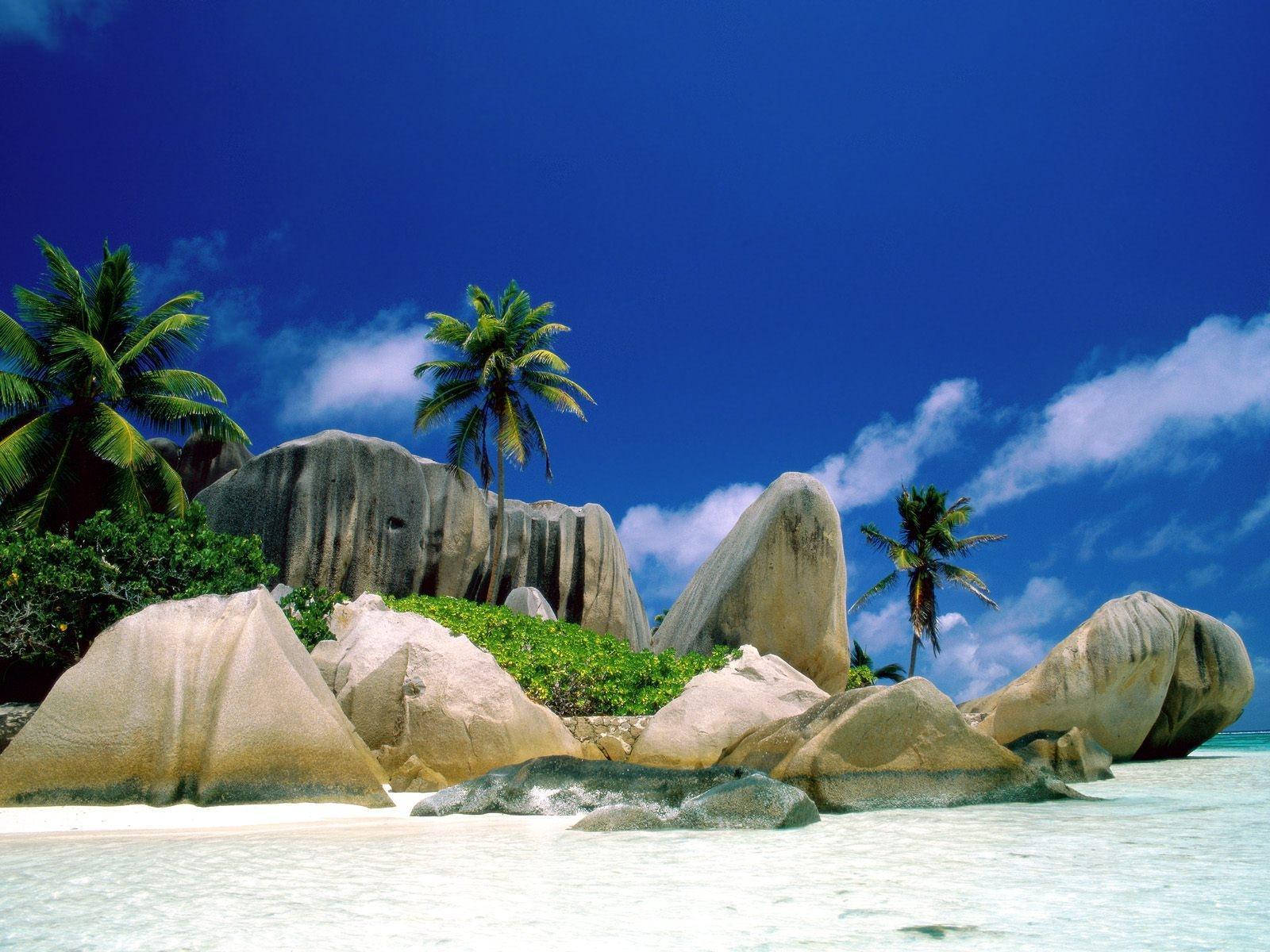 Beautiful Giant Stone Beach - Beautiful Giant Stone Beach