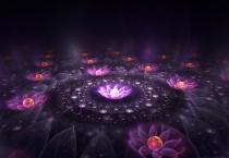 Exotic Lotus Luster Fantasy - Exotic Lotus Luster Fantasy