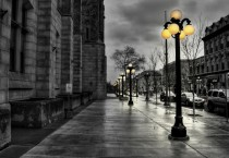 Exotic Quiet Street - Exotic Quiet Street