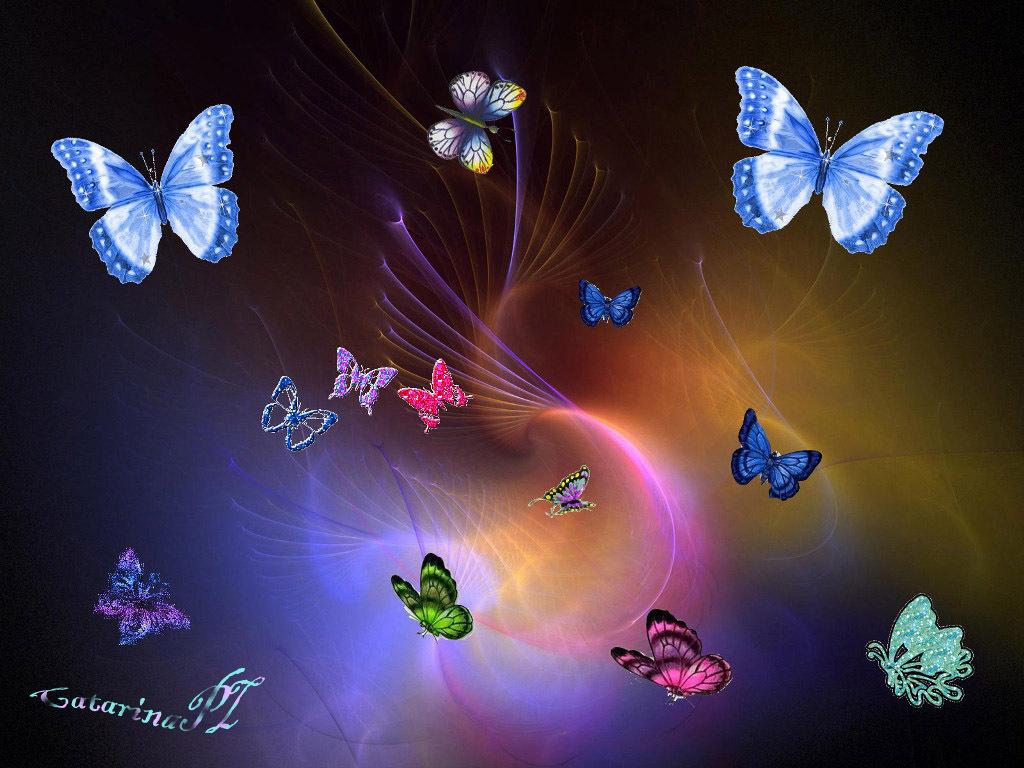 Flies Butterflies - Flies Butterflies