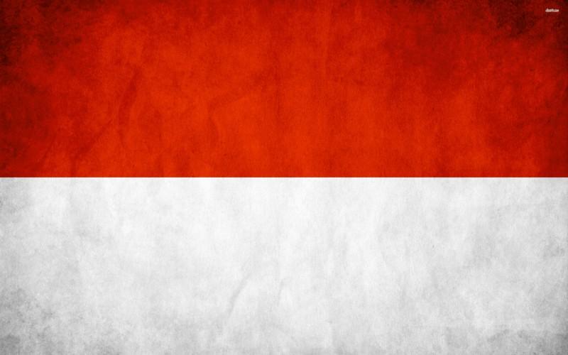 Indonesian Flag Digital Art - Indonesian Flag Digital Art