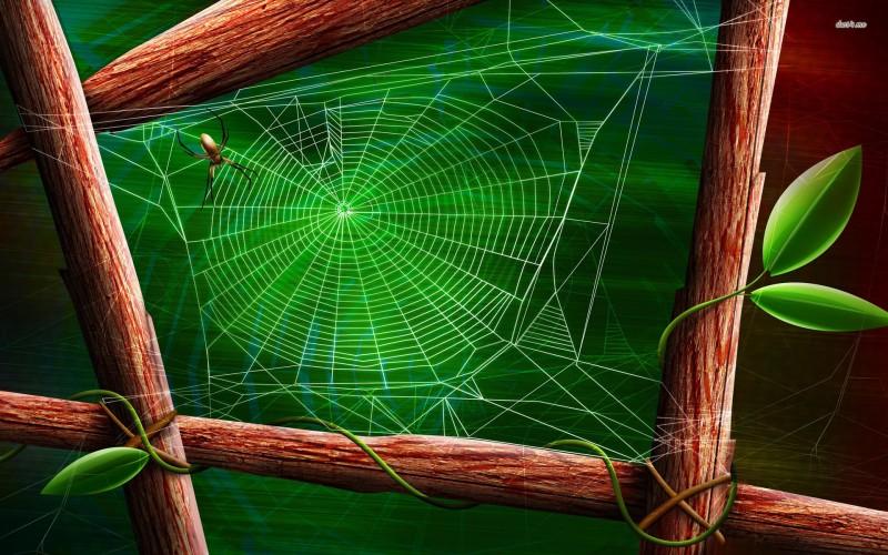 Spider Nest - Spider Nest