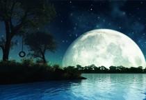 Swing On The Giant Moonlight - Swing On The Giant Moonlight