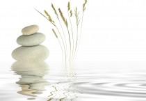 Zen On Top Waters - Zen On Top Waters