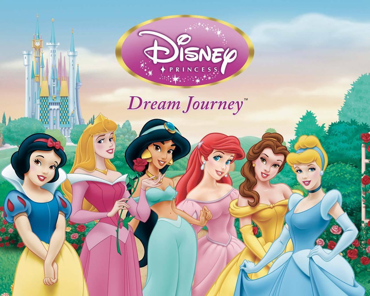 Disney Barbie And Disney Princess - Disney Barbie And Disney Princess