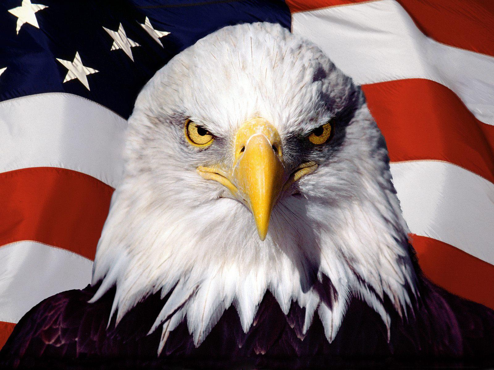 Flags American Patriot - Flags American Patriot